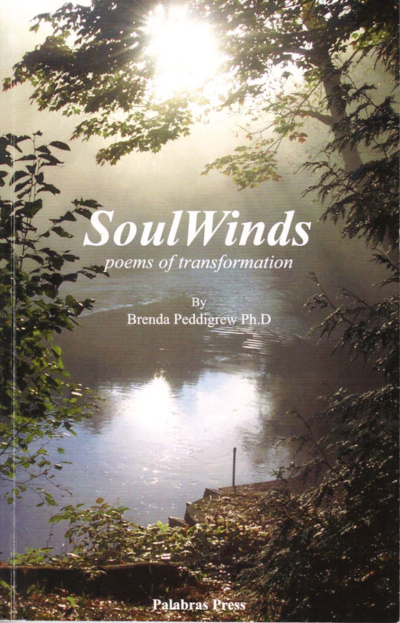 SoulWinds Book Cover